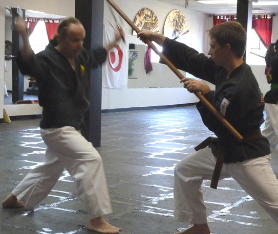 Kobudo Weapons Bo Sai